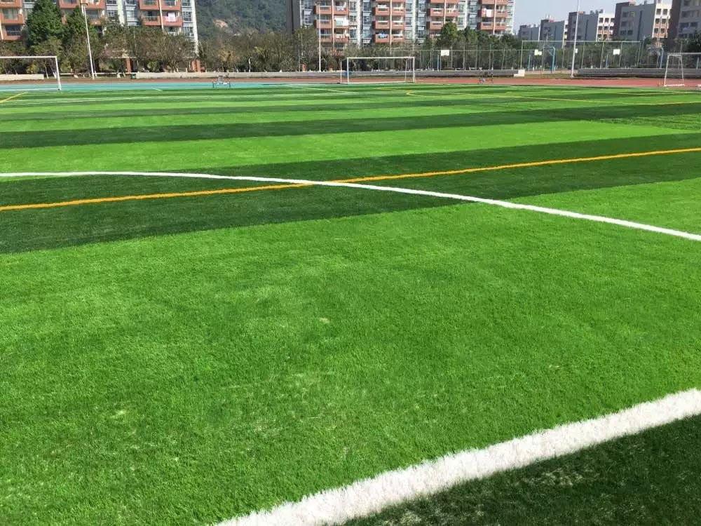 廊坊人造草坪哪家质量好——品质好的人造草坪供应