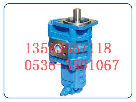 齿轮油泵厂家-博信华盛液压科技专业供应齿轮泵