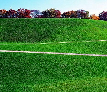 实用的人造草坪——金元伟业销量好的人造草坪供应