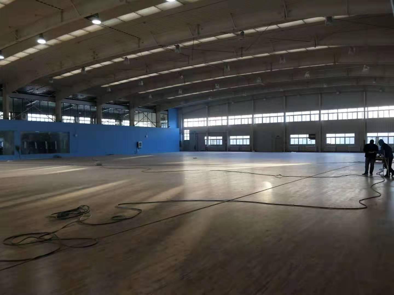 泸州桦木运动木地板厂