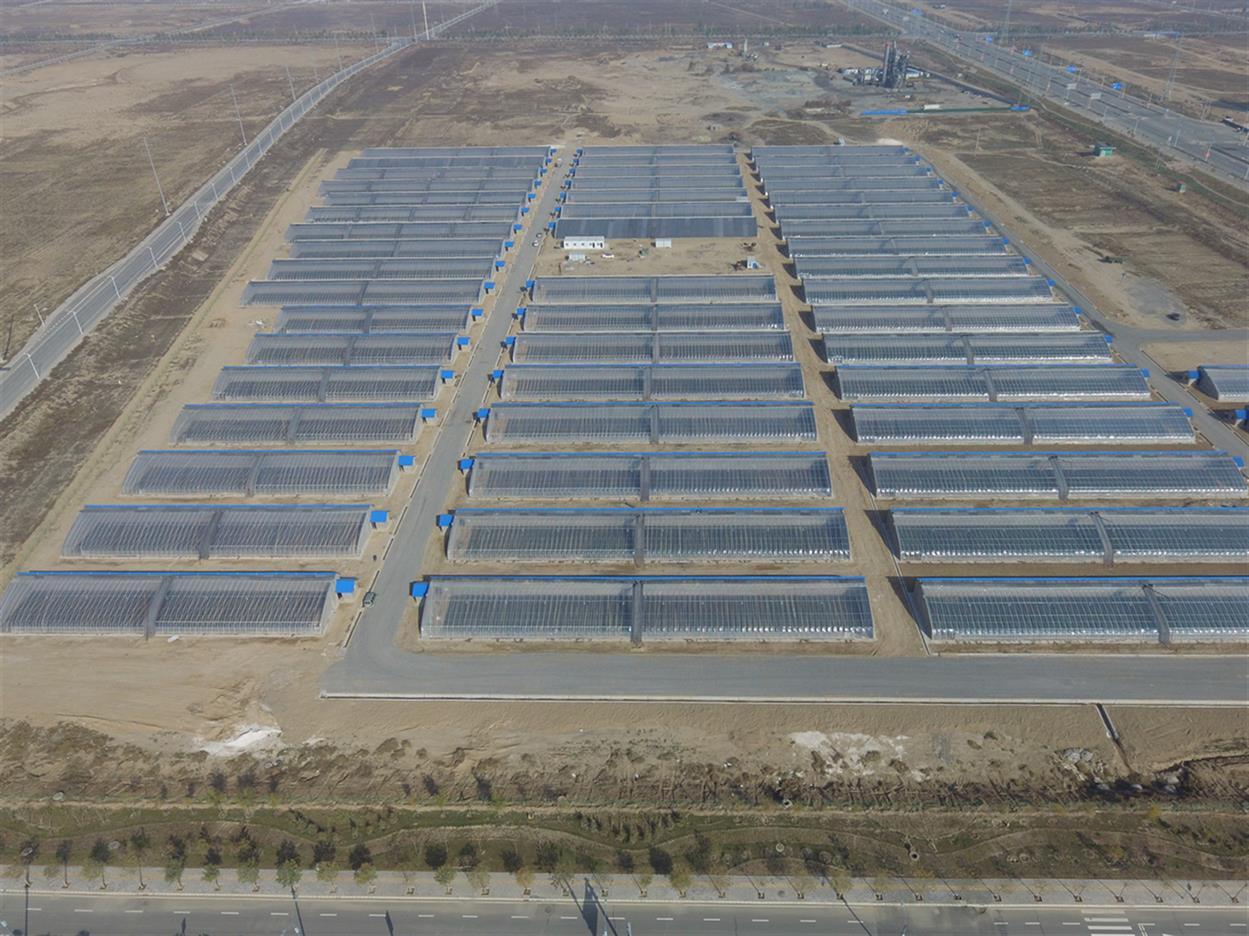 石家庄泡沫建大棚材料供应厂家 施工速度快