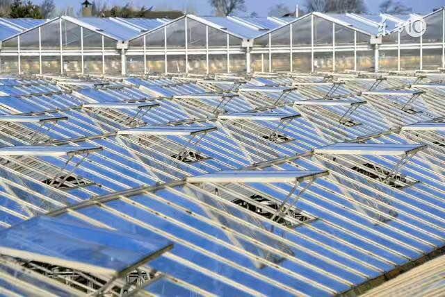 连云港进口温室遮阳拉幕系统安装运行原理 大棚遮阳