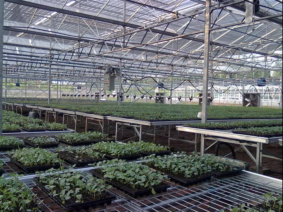 石家莊品質保證溫室噴灌機廠家