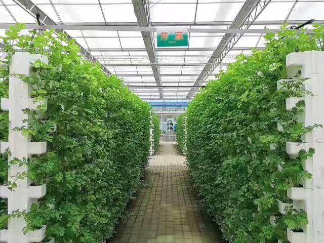 北京供應溫室大棚遮陽全套供應定做 遮陽配件 品質典范