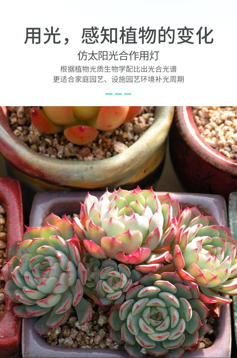 揭陽水培植物生長燈批發