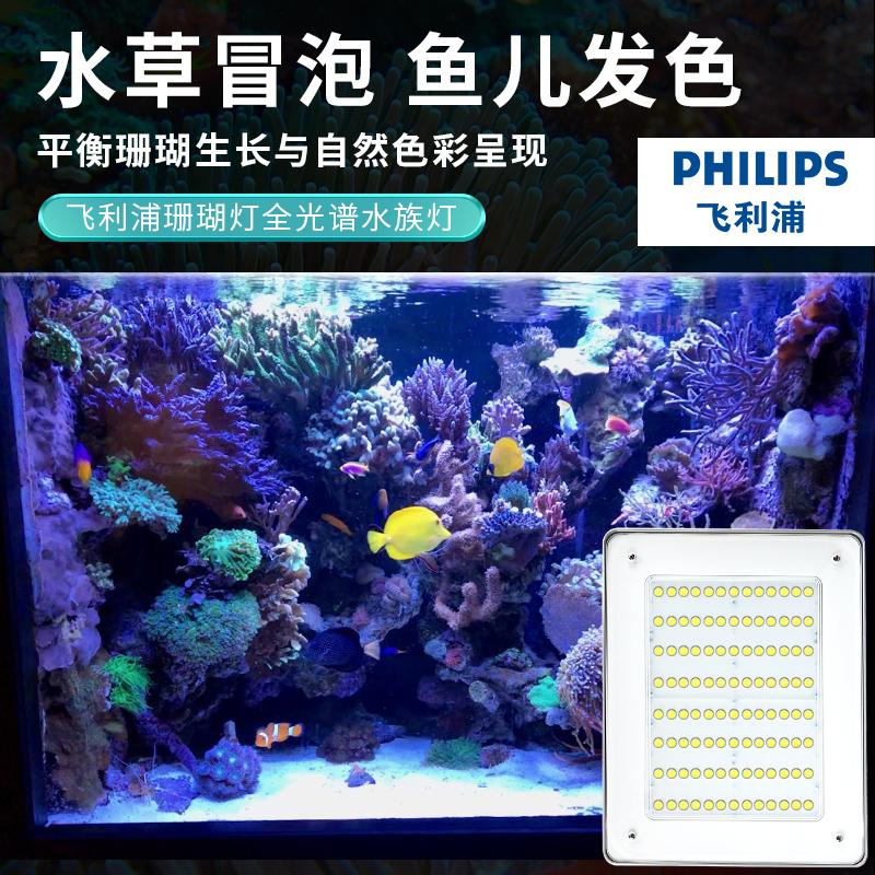 潮州珊瑚燈廠家報價 飛利浦 百明匯專注燈具生產