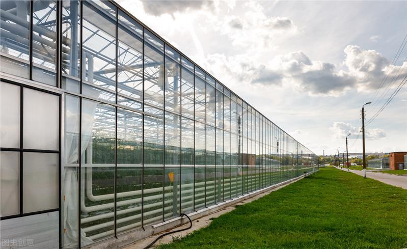 聊城玻璃溫室廠家