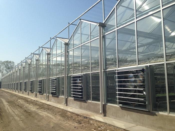 衢州智能溫室設計安裝