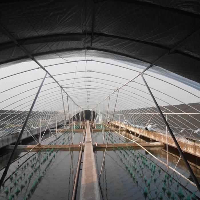 三亞水產品養殖大棚造價 規格齊全