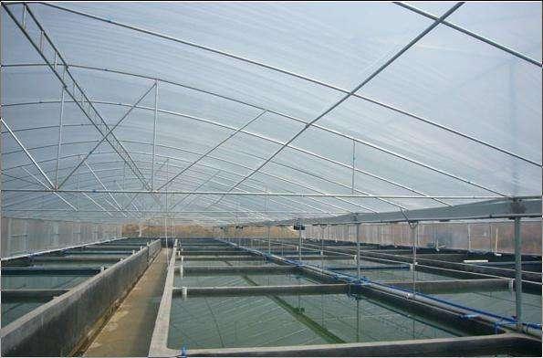 三亞水產品養殖大棚造價