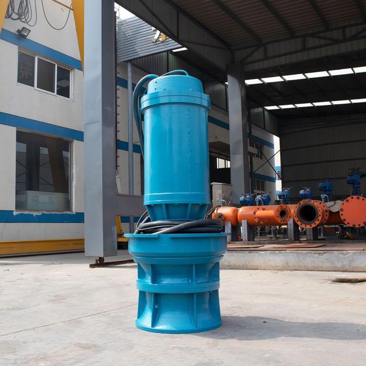 天津高扬程轴流泵厂家直销 质保期长